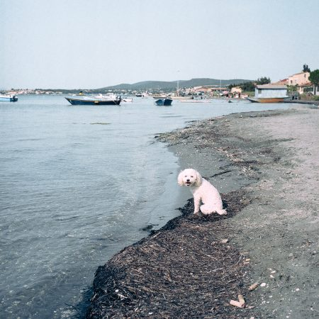 Sans titre #6 P.S. : je t'écris depuis la plage des Mouettes - Sandra Mehl - galerie Sit Down