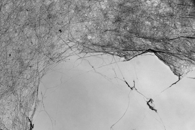 Anne France Abillon, Tisser le temps, Tisseuses de mondes /1 – n°13, galerie Sit down