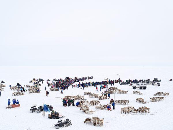 Charles Xelot, Reindeer race, 2016 © galerie Sit Down