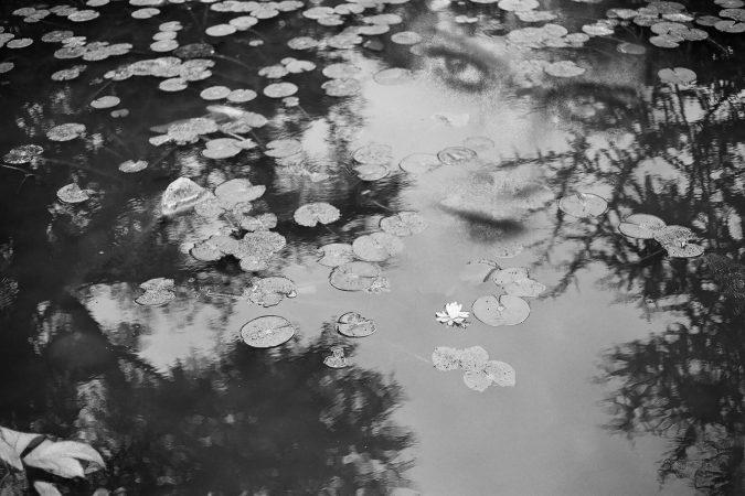 """Série """"Les inconnues de la scène"""", Sans titre 1 © Marie Maurel de Maillé courtesy galerie Sit Down"""
