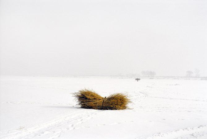 Catherine Henriette, conte d'hiver, La botte de foin, 2013 galerie Sit Down