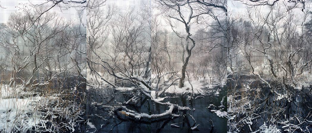 Florian Ruiz, La Contamination blanche, Galerie Sit Down, 0,328 Bq