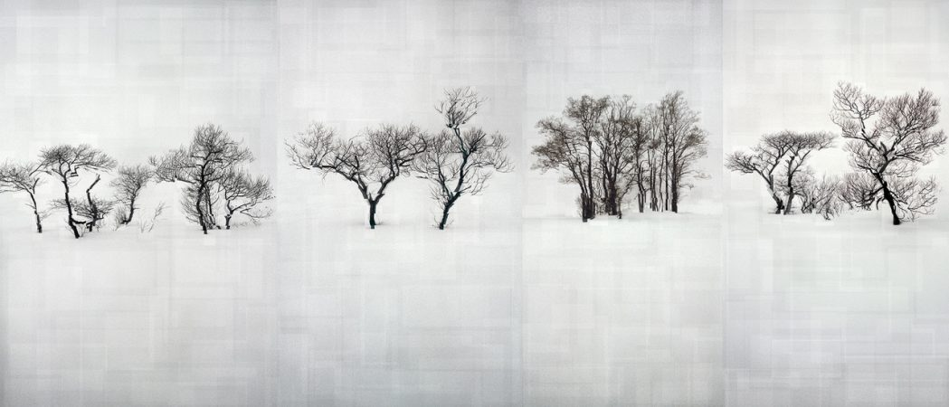 Florian Ruiz, La Contamination blanche, Galerie Sit Down, 0,363 Bq